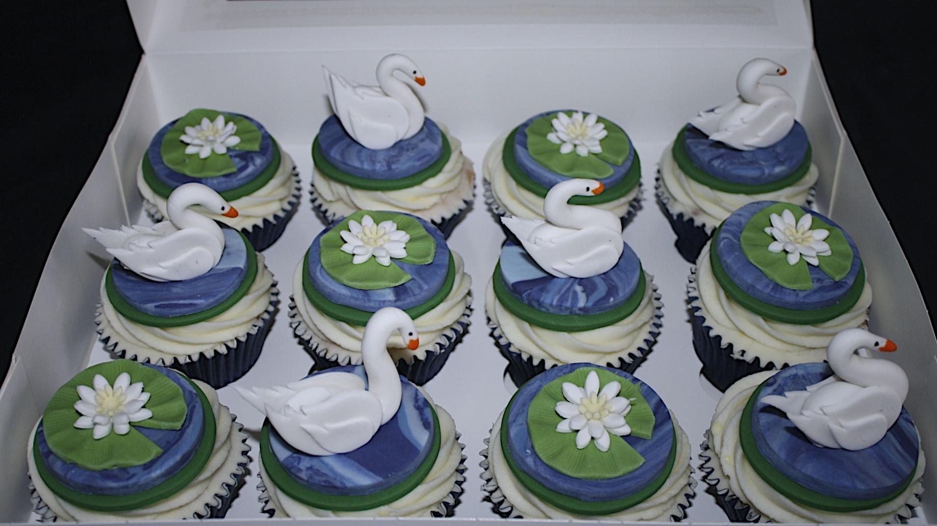 """Swans"""